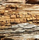 Forjado de madera con pudrición parda